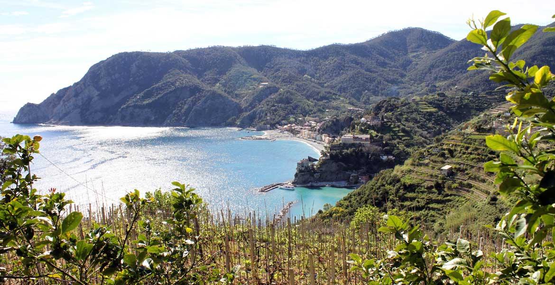 Area Marina Protetta delle Cinque Terre